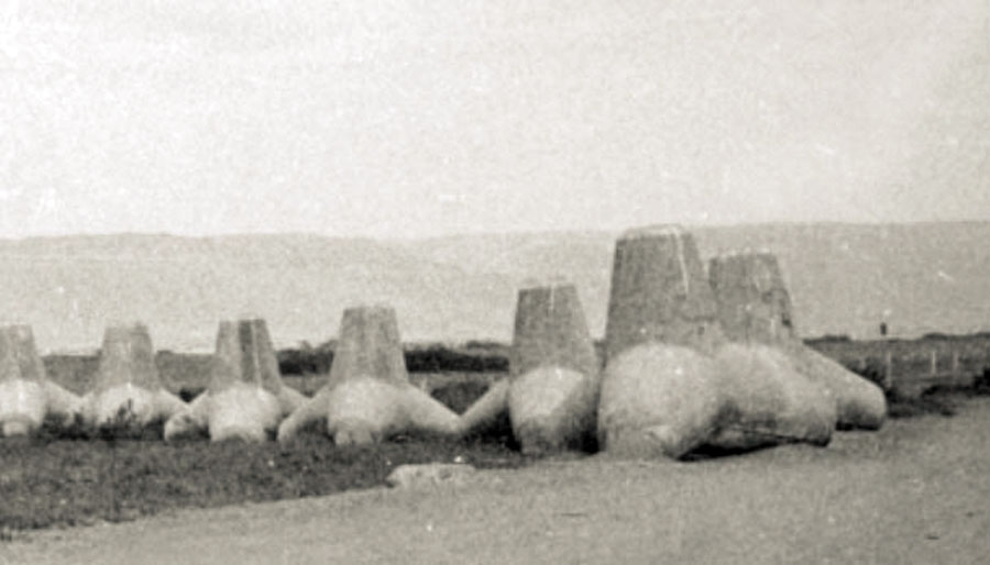 Arica - tetrápodos