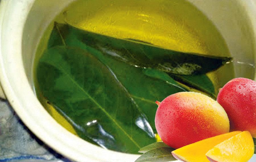 Te de mango
