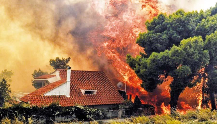 Incendio forestal deja 74 muertos