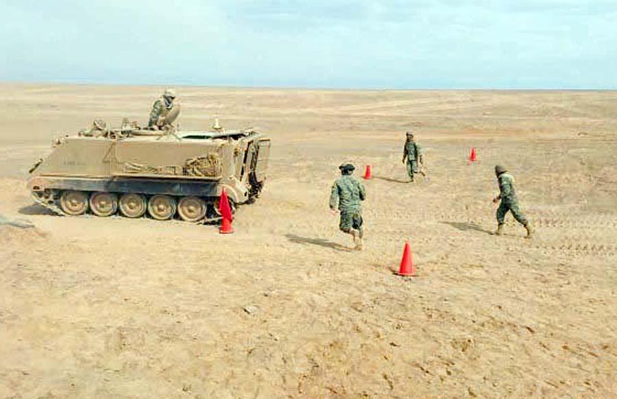 ejército chileno