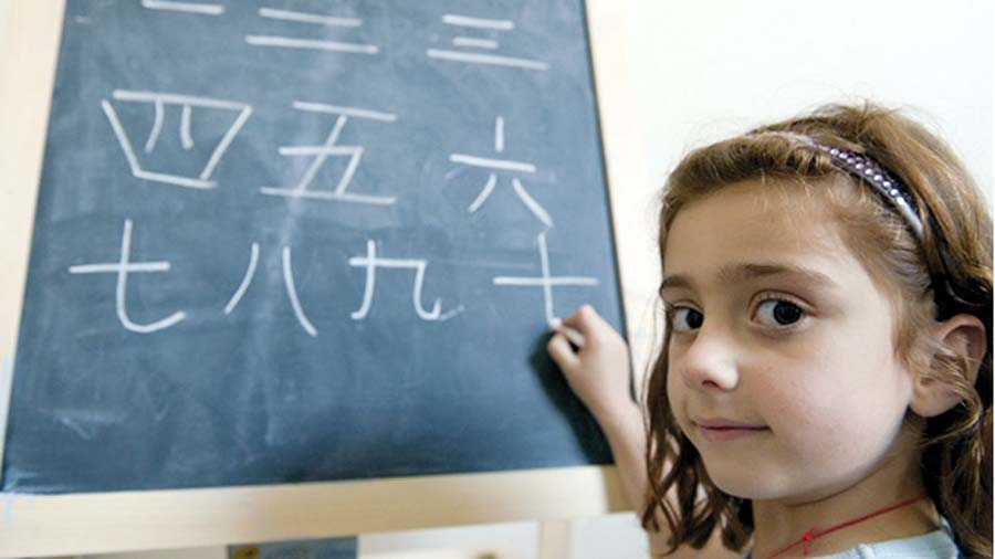 Idioma chino