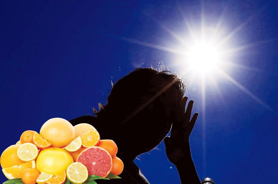 Alimentos que te protegen de la radiación solar