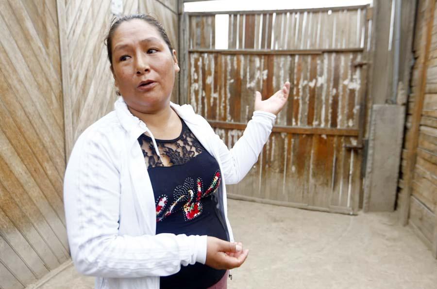 Liz Toledo Minaya