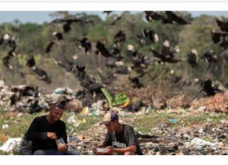 venezolanos disputan con buitres