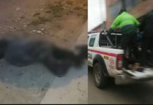 Motociclista en estado de ebriedad muere en carretera