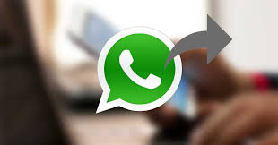 WhatsApp reenvio