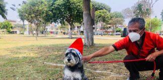 Organizan concurso de disfraces caninos