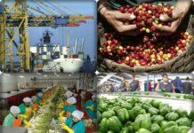 exportaciones agrarias