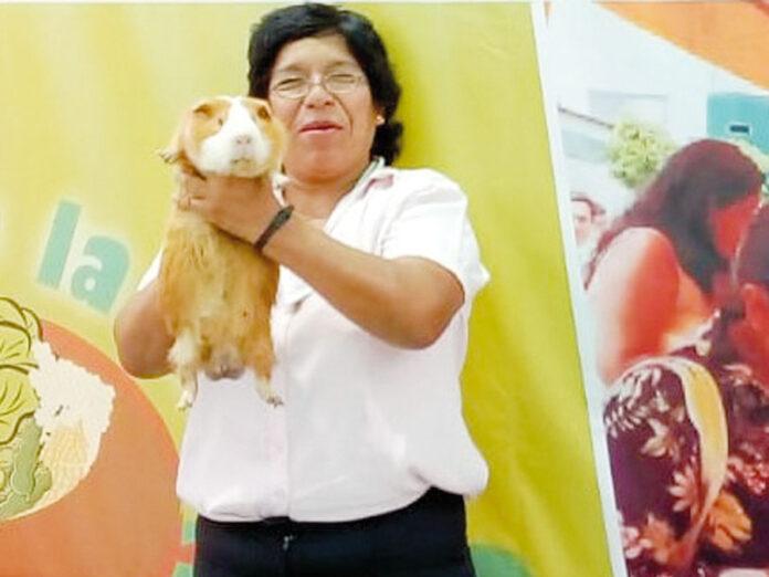 Ing. Zoot. Yuli Vilma Villanueva Quispe