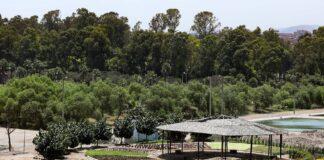 Bosque Educativo Municipal del Sur