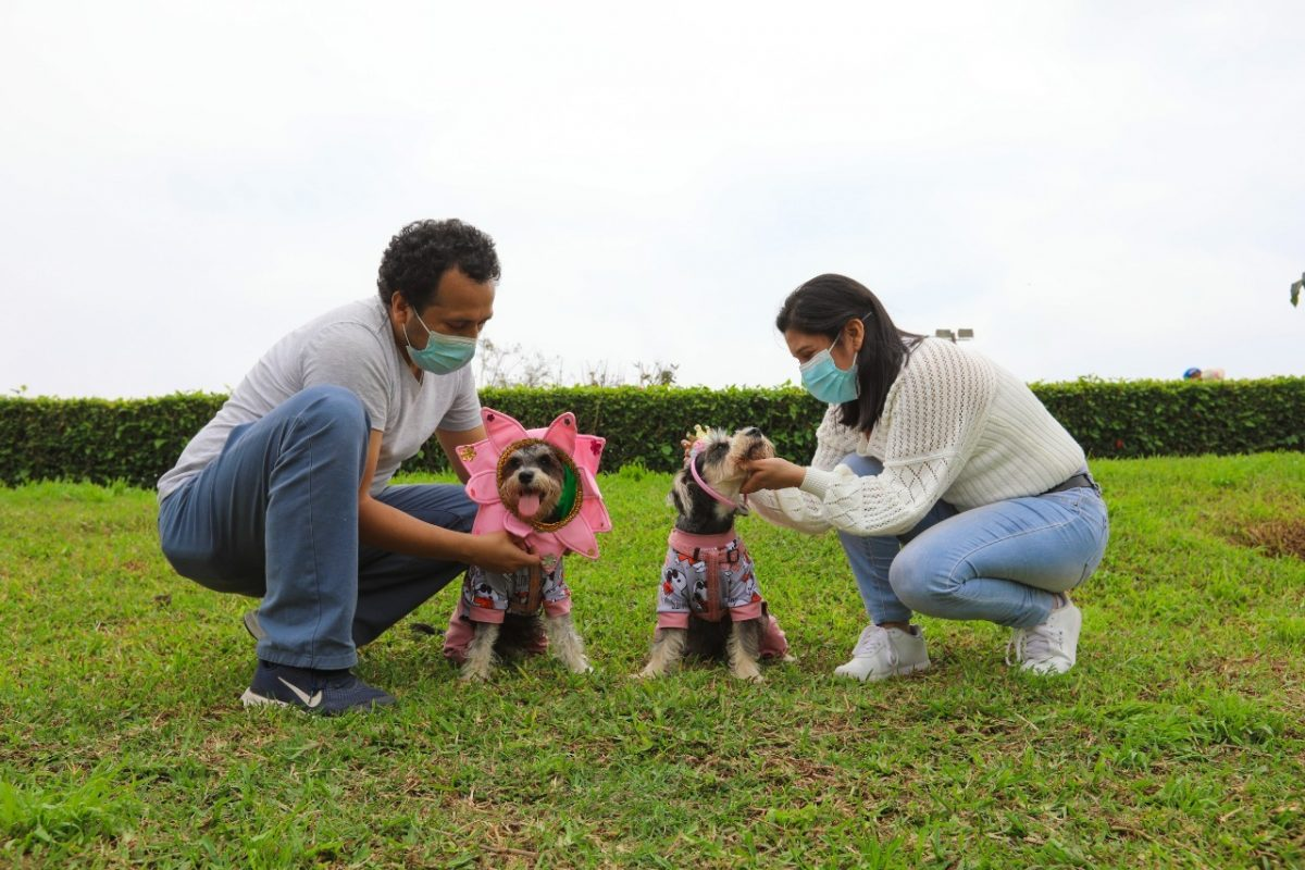 Festival canino de primavera en club zonal Sinchi Roca
