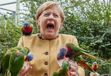 Merkel no postuló por el quinto mandato y se retira tras más de una década y media al frente de la primera economía europea.